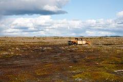 被放弃的老汽车 免版税图库摄影
