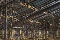 被放弃的老温室 免版税库存照片