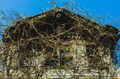 被放弃的被困扰的房子在伊斯坦布尔,土耳其 库存照片