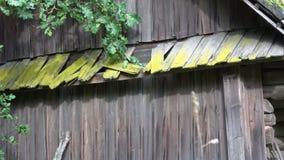 被放弃的谷仓老木 影视素材