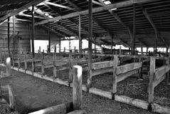 被放弃的谷仓 库存图片
