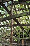 被放弃的谷仓 免版税库存照片