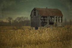 被放弃的谷仓在加拿大 库存照片
