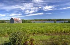 被放弃的谷仓,新不伦瑞克,加拿大 库存图片