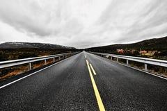 被放弃的路通过挪威的原野有沥青、森林和山的 库存图片