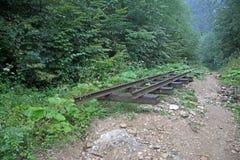 被放弃的铁路在峡谷关岛,俄罗斯 图库摄影