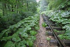 被放弃的铁路在峡谷关岛,克拉斯诺达尔边疆区,俄罗斯 免版税图库摄影
