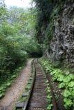 被放弃的铁路在峡谷关岛,克拉斯诺达尔边疆区,俄罗斯 库存照片