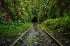 被放弃的铁路线和隧道在悉尼附近的Helensburgh  库存图片