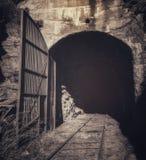 被放弃的铁路隧道在Åmål 免版税库存照片