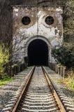 被放弃的铁路隧道 免版税库存图片