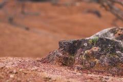 被放弃的铝土矿矿 GÃ ¡ nt,匈牙利 免版税库存图片