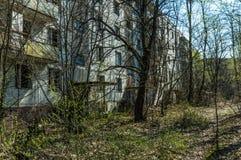 被放弃的鬼城Pripyat的街道 长得太大的树和崩溃的房子在切尔诺贝利核d的禁区 库存照片