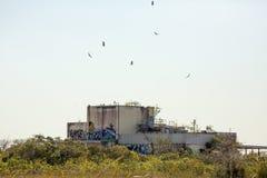 被放弃的Aerojet工厂的废墟在佛罗里达沼泽地 免版税库存照片
