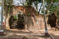 被放弃的andaman大厦包括印度海岛海岛根罗斯废墟 免版税图库摄影