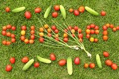 被放置的小的夏天蕃茄字 免版税库存图片
