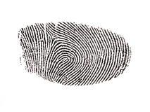 被数字化的指纹 库存照片