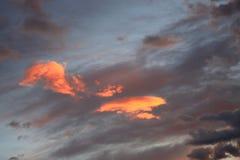 被日光照射了两朵小的云彩 免版税库存图片