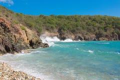 被日光照射了加勒比海滩3 免版税库存图片