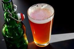 被日光照射了的啤酒 免版税库存图片