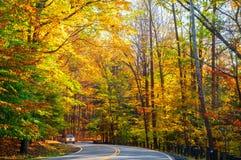 被日光照射了秋天路 免版税图库摄影
