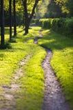 被日光照射了飘渺的路径 图库摄影