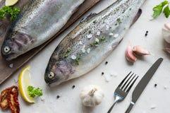 被晒干的两条新鲜的鳟鱼 库存图片