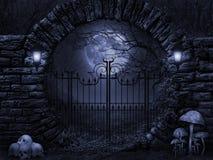 被月光照亮夜 免版税图库摄影