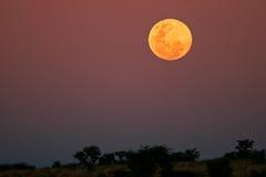 被月光照亮的横向 库存照片