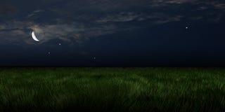 被月光照亮草甸 库存照片