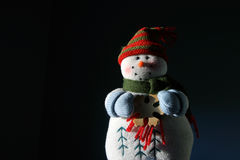 被月光照亮雪人 免版税图库摄影