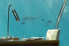 被服务的水下的餐馆白色陶器 库存图片
