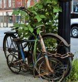 被束缚的老被忘记的自行车  免版税库存图片