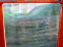被构筑的蜘蛛网 免版税库存图片