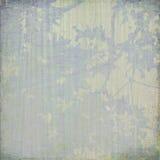 被构造的背景开花蓝色奶油色框架 免版税库存图片