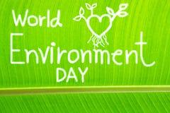 被构造的香蕉叶子,写世界环境日 免版税库存图片