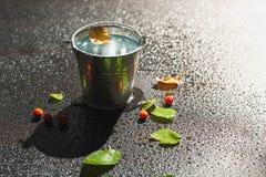 被染黄的桦树叶子漂浮水的表面上在罐子的 免版税库存照片