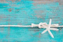 绳索被栓对在绿松石木背景的一个海星 库存图片
