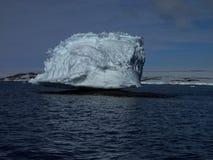 被栖息的冰山南极洲 免版税图库摄影