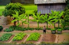 被模仿的模型泰国古老传统农业没有机器 免版税库存图片