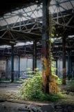 被毁坏的工厂大厅在一家被放弃的工厂 免版税图库摄影
