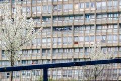 被毁坏的理事会公寓住房块,罗宾汉庭院 免版税库存照片