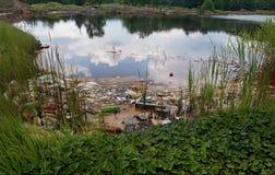 被污染的湖 免版税库存图片