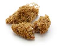 被油炸的蜂窝芋头饺子,中国粤式点心 库存照片