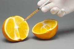 被注射的桔子 免版税图库摄影