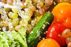 被洗涤的蔬菜 库存图片