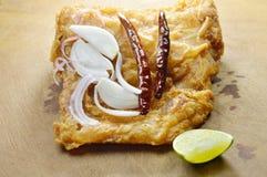 被涂上的油煎的腌制鱼怂恿用切片青葱和辣椒在剁块 图库摄影