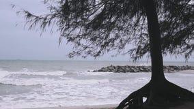 被混合的海波浪 影视素材
