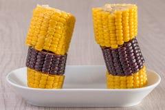 被混合的黑和黄色玉米 库存照片