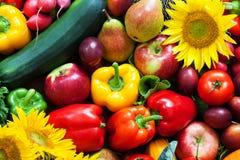 被混合的水果和蔬菜  图库摄影